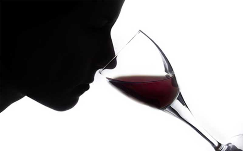 degustation de vin - topofthetop