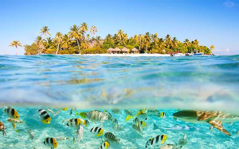 ile paradisiaque tahiti - topofthetop